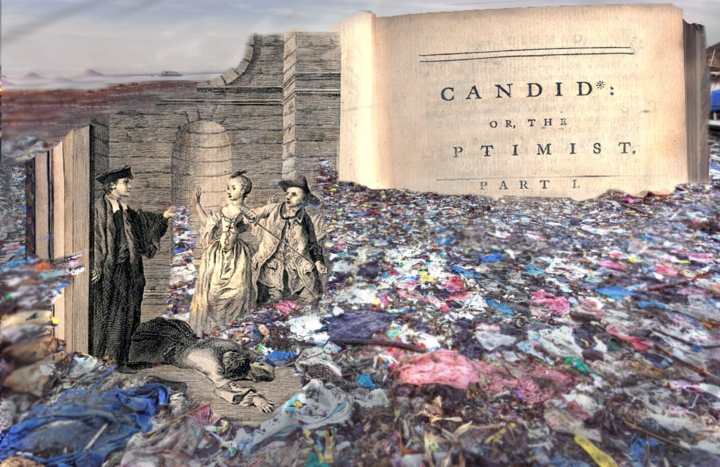Candide in a plastic wasteland